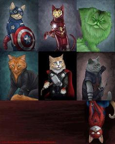 cats Twichell I think I'm officially up too late. Cute Animal Drawings, Cute Drawings, Funny Cat Jokes, Dog Artist, Super Cat, Character Design Animation, Cute Little Animals, Marvel Funny, Warrior Cats