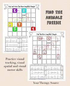 Visual tracking and visual motor activity Find the Animal Freebie