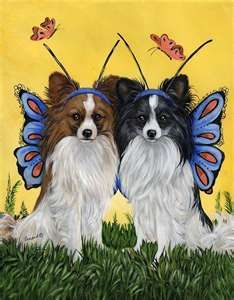 I love butterfly dogs!