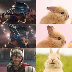 25 Marvel memes that are never funny - Avengers - Humor Avengers Humor, Marvel Avengers, Marvel Jokes, Films Marvel, Funny Marvel Memes, Dc Memes, Marvel Dc Comics, Funny Comics, Thor Jokes