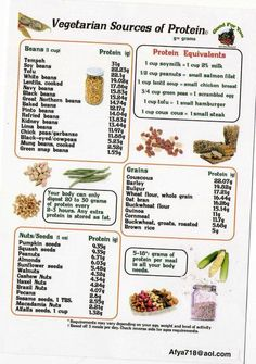 Approved: Vegetarian Protein Information. If you're Soy-free, you can substitute Soy w/Almond or Coconut, also. Vegetarian Protein Sources, Vegan Vegetarian, Paleo, Fitness Nutrition, Health And Nutrition, Super Healthy Recipes, Whole Food Recipes, Plant Based Nutrition, Food Facts