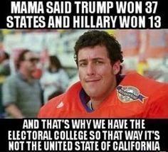 Fact!!! ELECTORAL COLLEGE!!! America = Constitutional REPUBLIC!!!