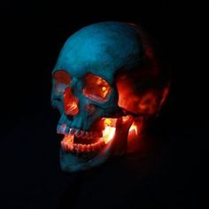Bilderesultat for skull reference