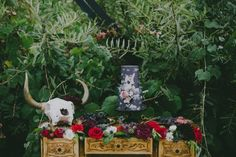 Simple And Elegant Halloween Wedding Decoration Ideas 29 There are some dates that may appeal to one bride and not another. Maybe you have always dreamed of a […] Black Wedding Cakes, Wedding Cakes With Flowers, Green Wedding Shoes, Halloween Wedding Decorations, Halloween Weddings, We Get Married, Colorful Candy, Boho Wedding, Dream Wedding