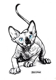 Lately I've been fascinated by sphynx cats, which resulted in me drawing a lot of them. This is one of those drawings, hope you like it Sphynx Chat Sphynx, Illusion Kunst, Sphinx Cat, Cat Tattoo Designs, Tattoo Drawings, Tattoo Cat, Tattoos, Sphinx Tattoo, Cat Drawing