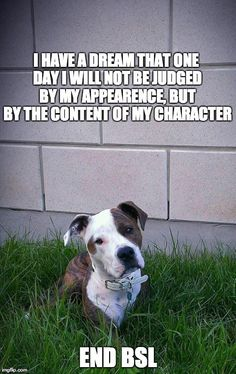 End BSL.....