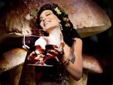 Big Vino Glass