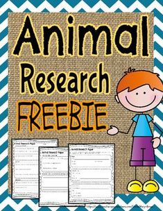 professional paper editor for hire for phd best essays arguments against animal testing that everyone should know about should animals be used for scientific and