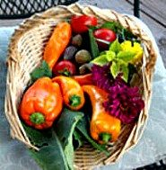 Yes, I grew this! Basket of colorful peppers.