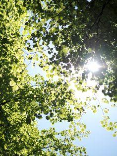Summer sky in Helsinki Travel Around The World, Around The Worlds, Summer Sky, Helsinki, Travelling, Inspiration, Beauty, Biblical Inspiration, Beauty Illustration