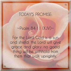 Psalm 84:11 KJV