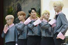 Vocal Unit ♡ Seungkwan ☆ Joshua ☆ Dk ☆ Woozi ☆ Jeonghan   Seventeen