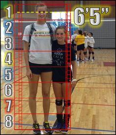 Human Proportions Study. Kara Maleski. by WaffleJockey.deviantart.com on @DeviantArt. #Art_Ref #Art #Ref #Model_Sheet #Model #Sheet #Reference #Proportions #Proportion_Sheet #ProportionSheet #Amazon #Amazons #Ref_Figure #Size #Height #ReferenceFigure #Body_Proportions #Height_Chart  #Human_Proportions #Scale #Chart #BodyTypes #Body #Types #Figure_Drawing #Tall #Shape #Women #Art_Study #ArtStudy #Study #Template #Art #Cheat #Sheet #Giant #SheGiant #She_Giant #Measurements