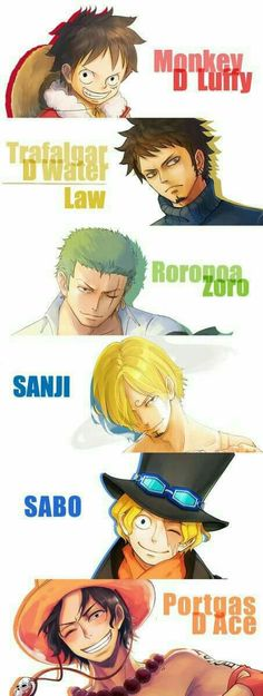They're all Luffy's brothers, not just Sabo and Ace, the other three give off brotherly vibes too