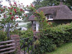 Det smukke lille hus, med rosen buen.ved indgangen,  og udsigt over Viborg sø, synes jeg ikke er til at stå for.