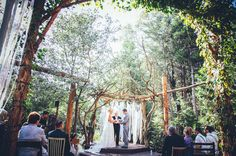 Forest woodland wedding setting