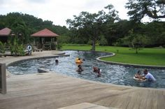 Negril Day Trip: Appleton Rum Estate, Black River and YS Falls Explore the beautiful southern coast of Jamaica on this day trip from Negril. A scenic tour to St. Elizabeth on the south coast will take you to YS Falls, Black River for a boat safari ride and Appleton Rum Estate. A delicious, authentic Jamaican lunch and transportation is included.  Your guide will pick you up at your Negril hotel early in the morning. Make your way through small farming villages and...