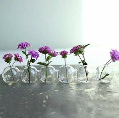 Insect-Inspired Vases - The Caterpillar Vase Makes Floral Centerpieces Cuter (TrendHunter.com)