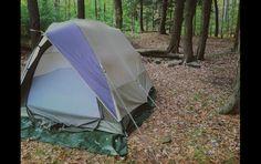 Allegheny | Sanborn Scout Field Log