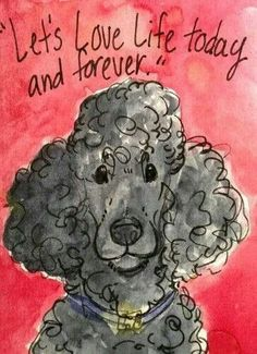 Love a poodle baby :)