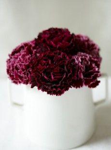 folio-meringes Kara Rosenlund, Blush Pink, Flora, Palette, Stylists, Deep, Plants, Light Rose, Pallets