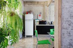 Cozinha integrada tem jardim vertical com samambaias criado pela própria moradora.