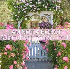 I Am Not A Robot - Marina and The Diamonds