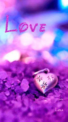 Purple ♥♥♥♥ ❤ ❥❤ ❥❤ ❥♥♥♥♥