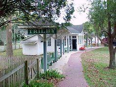 Pioneer Florida Museum, Dade City, Florida