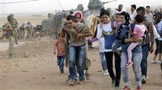 ACNUR: el mundo se ha vuelto insensible ante el sufrimiento de los refugiados