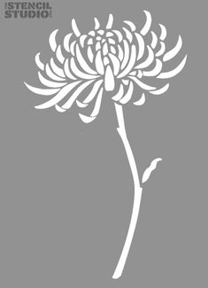 Stencils for home decor and diy. Chrysanthemum Flower stencil. Reusable wall stencil design from The Stencil Studio