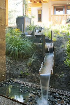 Sunset Idea House - asian - landscape - san francisco - Shades Of Green Landscape Architecture