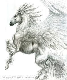 This Pegasus is a little to souped up for my liking but the drawing is gorgeous.