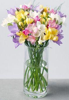 Весенние Цветы, Красивые Цветы, Свадебные Цветы, Икебана, Ракушкиискусство, Тюльпаны, Огород, Цветочные Фоны, Срезанные Цветы