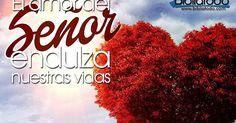 """#BuenDia! La reflexión de hoy se titula: """"La unidad fundamental de la Iglesia"""". http://devocioninercial.blogspot.mx/2015/06/bs180615.html?spref=tw - #Cristo #LaBuenaSemilla #Comparte!"""