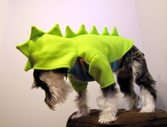 I don't have a dog but if I did this would be so cute! Dinosaur Fleece Dog Costume by playfulpup on Etsy, $35.00