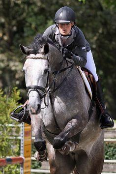 Horse jumping. www.topsportfoto.com