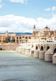 Roman Bridge, Córdoba | Spain