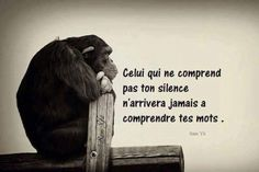 Citations - Celui qui me comprend pas ton silence. Citation Silence, Message Positif, Jolie Phrase, Funny Pix, French Quotes, French Sayings, Life Words, Your Word, Solitude