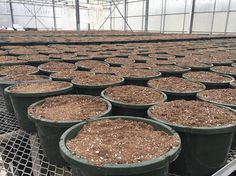 Hanging baskets are filled with soil just waiting for our growers to work their magic and plant some flowers! #hangingbasket #spring #penfieldny
