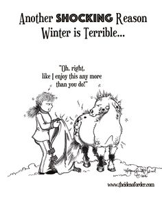 Presented by: Coming from Florida where the average humidity is like this whole static electricity thing was somewhat foreig. Funny Horse Memes, Funny Horse Pictures, Horse Humor, Funny Horses, Cute Horses, Horse Love, Funny Quotes, Horse Smiling, Equestrian Memes