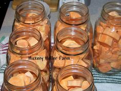 Hickery Holler Farm: Canning Sweet Potatoes