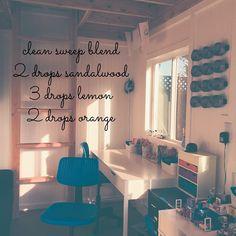15-Clean-Sweep-sandalwood_lemon_orange.jpg 640×640 pixels