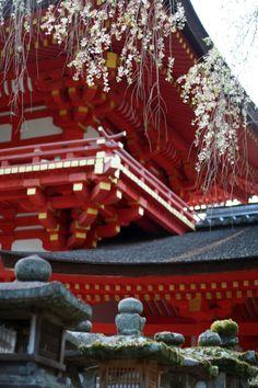 Kaduga Taisha Shrine • 春日大社