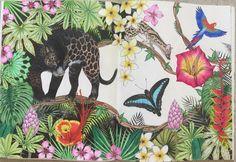 #DaisyFletcher #Intothewild Daisy, Moose Art, Artwork, Animals, Animais, Work Of Art, Animales, Animaux, Daisy Flowers