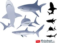 Shark Vectors, Photos and PSD files Free Vector Art, Vector Graphics, Shark Images, Animation Sketches, Carnival Games, Reference Images, Vintage Prints, Digital Scrapbooking, Drawings