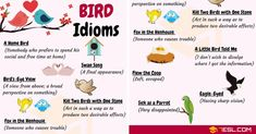 Here is the list of commonly used BIRD Idioms in English with meaning and examples. Two Birds, Creating A Business, Pinterest Blog, Idioms, English, Cat Cat, Greek, Boys, Baby Boys