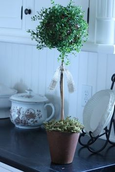 This is the angel vine topiary that I really must have for my office.