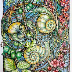 Escargot ... I always enjoy adding color to #irinavinnik art #manicbotanic #zifflin #fabercastellpolychromos #prismacolorpencils #prismacolorpens #zigbrushables #adultcolouring #adultcoloringbook #coloringbook #coloring #colorpencils #colorpencil