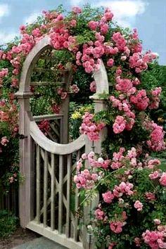 Beautiful Cottage Garden